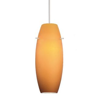 Bongo Pendant Light   Incandescent   Track Mount