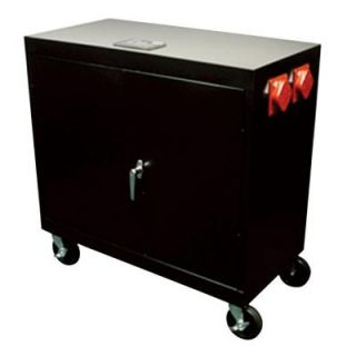 Geneforce 3000 Watt (9000 Watt Surge) Battery Based Emergency with 120 Volt Power System GEN 1600