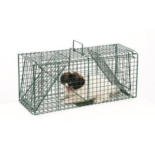 Pentagon Green Dual Door Live Animal Pet Trap / Cage: Pest Control