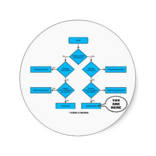 Heterotroph Flow Chart   You Are Here Round Stickers