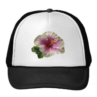 Hibiscus Candy Striper Hat
