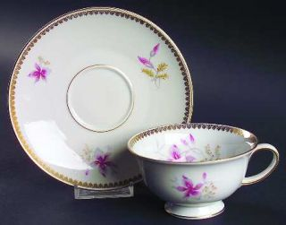 Rosenthal   Continental Orchid (Aida) Footed Cup & Saucer Set, Fine China Dinner