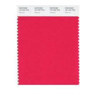 PANTONE SMART 18 1762X Color Swatch Card, Hibiscus   House Paint