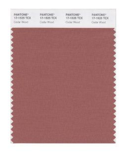 PANTONE SMART 17 1525X Color Swatch Card, Cedar Wood   Wall Decor Stickers