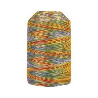 King Tut Egyptian Cotton Thread   918 Joseph's Coat