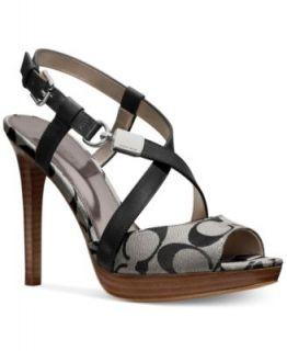 Calvin Klein Womens Asa Sandals   Shoes