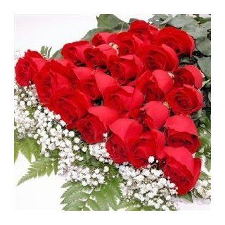 Two Dozen Long Stemmed Premium Red Roses