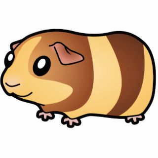 Cartoon Guinea Pig (chocolate buff) Photo Cutout