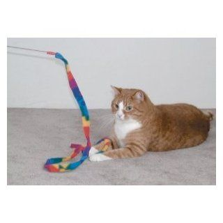 Cat Dancer 301 Cat Charmer Interactive Cat Toy 3pk : Catnip Toys : Pet Supplies
