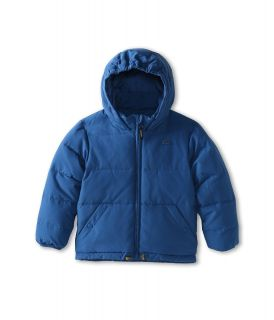 Lacoste Kids Boys Quilted Down Jacket With Hood Little Kids Big Kids Dark Cabin