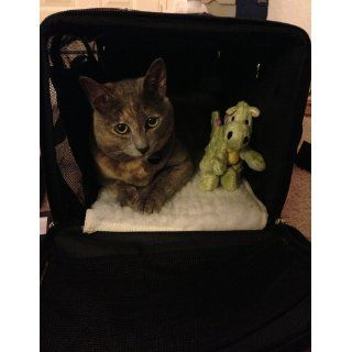 Sherpa Delta Airlines Deluxe Pet Dog Cat Carrier Airline Approved Medium Black to 16lbs. BONUS Sherpa Mini Baby Dragon Toy  Soft Sided Pet Carriers