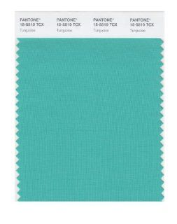 PANTONE SMART 15 5519X Color Swatch Card, Turquoise   Wall Decor Stickers
