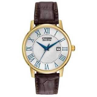 Mens Citizen Eco Drive™ Roman Numeral Watch (Model: BM6752 02A