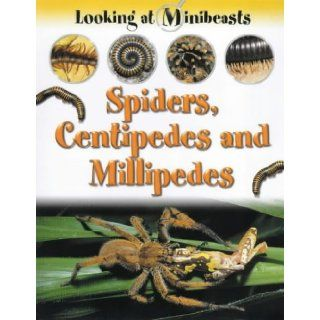 Spiders, Centipedes and Millipedes (Looking at Minibeasts): Sally Morgan: 9781841381688: Books