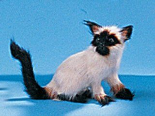 Siamese Cat Collectible Figurine Kitten Statue Decoration Model New