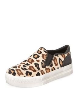 Jungle Leopard Print Calf Hair Sneaker   Ash   Brown pattern (10B)