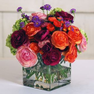 Jane Seymour Botanicals 9 in. Ranunculus and Snowball Mix with Square Glass Vase Silk Flower Arrangement   Silk Flowers