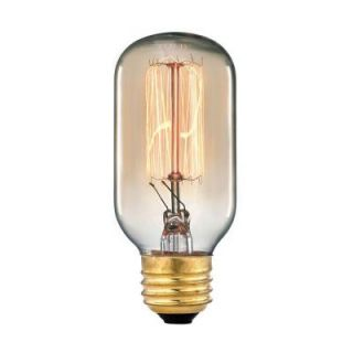 Ogden Collection 60 Watt Incandescent Medium Base Vintage Filament Light Bulb TN 10201