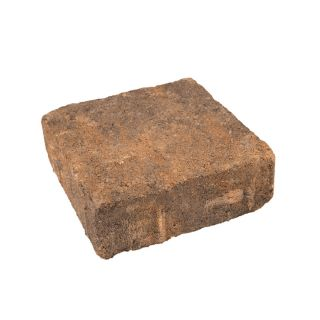 Harvest Square Concrete Paver (Common: 7 in x 7 in; Actual: 7.1 in x 7.1 in)