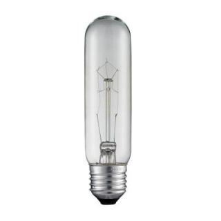 Titan Lighting Ogden Collection 60 Watt Incandescent T6 Medium Filament Light Bulb   Vintage Style Light Bulb TN 38004