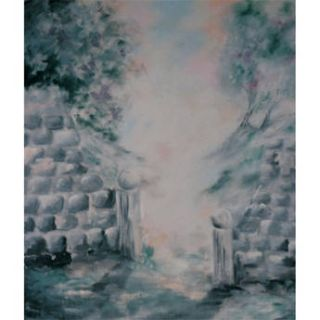 Studio Dynamics 8x9 Canvas Scenic Background LSM   89LSANDI