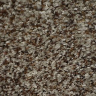 STAINMASTER Active Family Documentary Seminole Textured Indoor Carpet