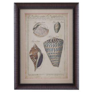Bassett Mirror 9900 326BEC Vintage Shell Study II Canvas Wrap