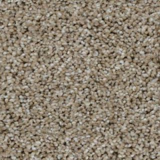 Trendy Threads I   Color Crafton Texture 12 ft. Carpet H0103 806 1200 AB