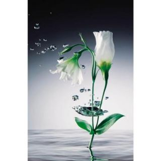 Ideal Decor 69 in. x 0.25 in. Crystal Flowers Wall Mural DM673