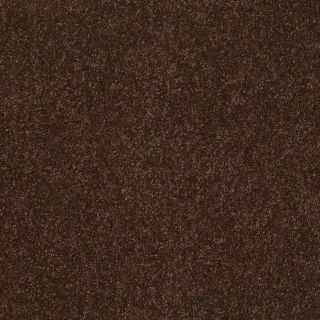 Shaw Supreme Delight 3 Decaf Rectangular Indoor Tufted Area Rug (Common: 8 x 11; Actual: 96 in W x 132 in L)