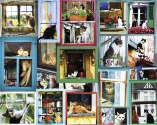 White Mountain Window Cats 1000 Piece Jigsaw Puzzle   Puzzles