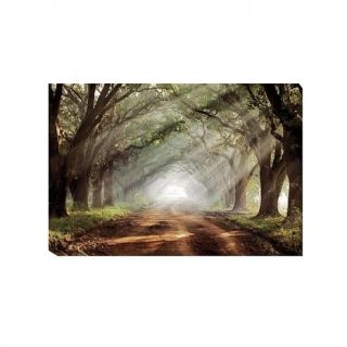 """Mike Jones """"Evergreen Plantation"""" Gallery Wrapped Giclee Canvas Wall Art   Large   7871675"""